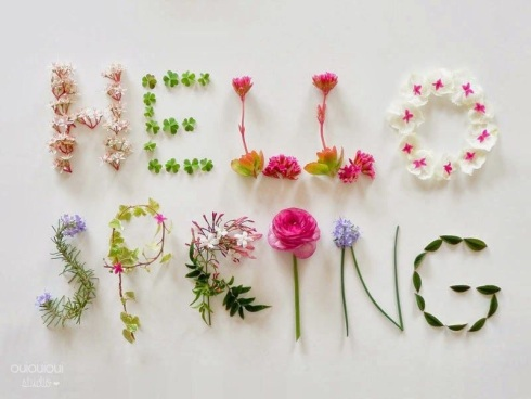 SewMod spring break